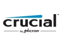 Crucial CT51264BF160BJ - MODULO MEMORIA RAM S O DDR3 4GB PC1600 CRUCIAL SINGLE RANKED MODULO S O DDR3 4GB PC1600 CR