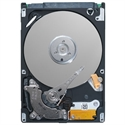 Dell 400-AEFB - 1Tb 7.2K Rpm Sata 6Gbps 3.5In Hot Plug Hard Drive13gcuskit - Capacidad: 1.000 Gb; Interfaz