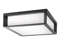 Philips 8718291444350 - Philips Ecomoods Skies - Lámpara de pared - bombilla fluorescente - E27 - 14 W (equivalent