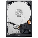 Western-Digital WD5000AURX - WD AV WD5000AURX - Disco duro - 500 GB - interno - 3.5'' - SATA 6Gb/s - 5400 rpm - búfer: